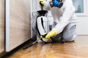 Exterminator Hard at Work in a Broken Arrow Rental Home