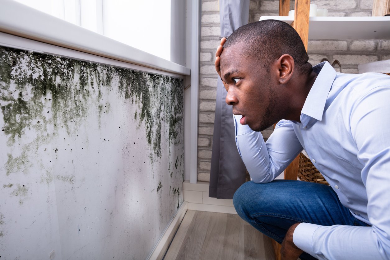 Broken Arrow Tenant Looking at Mold in His Rental Home