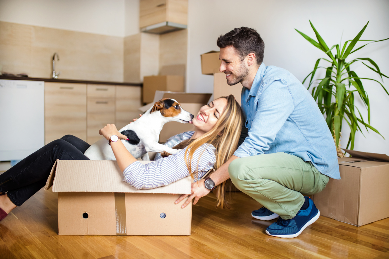 Northbrook Couple Packing Moving Boxes with their Jack Russel Terrier