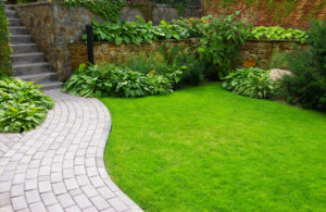 Low-Maintenance Summer Landscaping Tips
