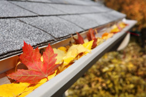 Prepare Your Property for Fall
