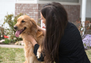 Pet-Friendly Renting can Increase rent Revenue