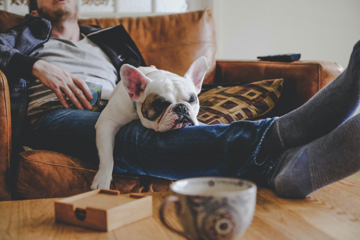 Portsmouth Man with French Bulldog in His Lap
