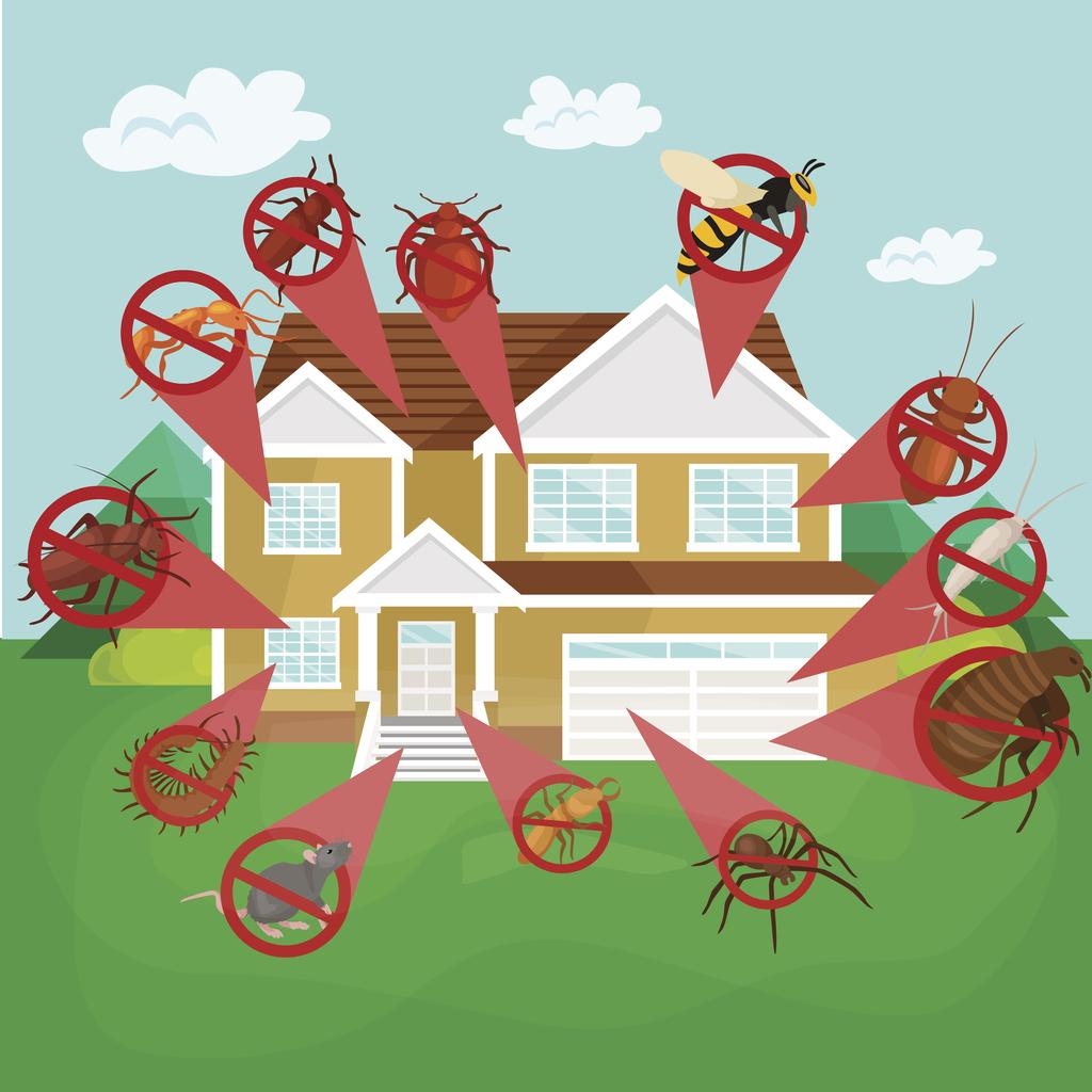 Keeping Your Satellite Beach Rental Property Pest Free