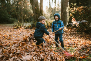 A Pair of Boys Raking Up the Autumn Leaves in Cocoa