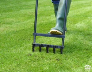 Manually Aerating the Lawn at a Rental Home in Brainerd