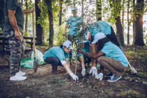 Chicago Volunteers Planting Trees