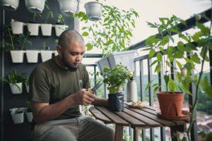 Chicago Tenant Tending his Balcony Garden