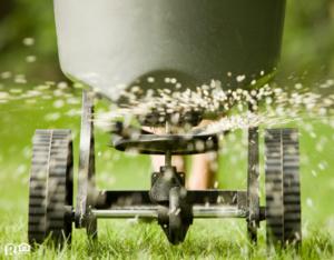 Fertilizer Pellets Spraying onto a Green Lawn