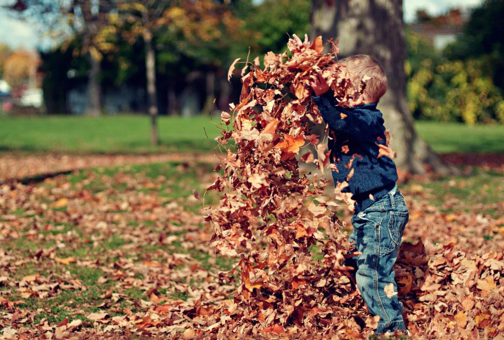 maintenance creates fall happiness