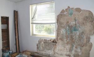Apex Rental Property Being Restored After Mold Remediation Services