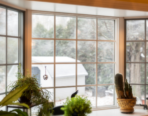 Apex Rental Property with Beautiful Clean Windows
