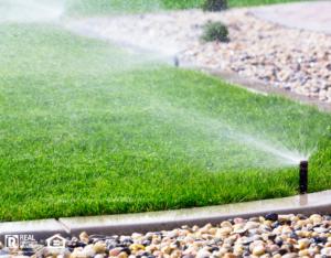 Sprinklers Running in a Bonaire Rental Property's Yard