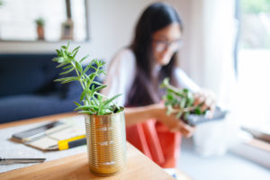 Flushing Woman Repurposing Metal Cans for Planters on her Desk