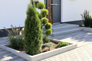 Modern Xeriscaping Design in Front Yard with Trees and Shrubs