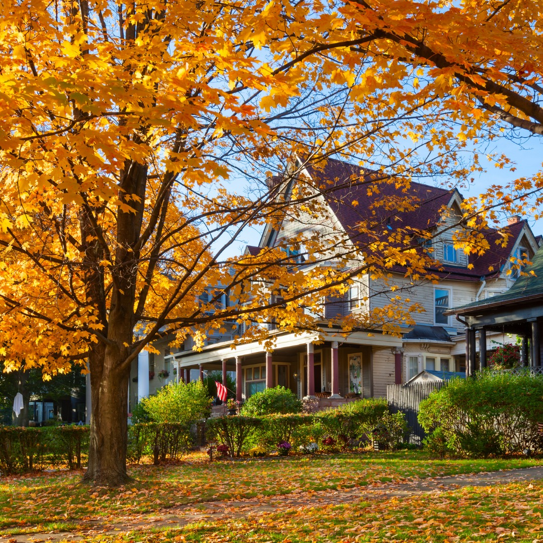 Home in New York during autumn
