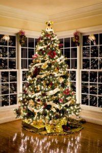 tips on setting up a christmas tree
