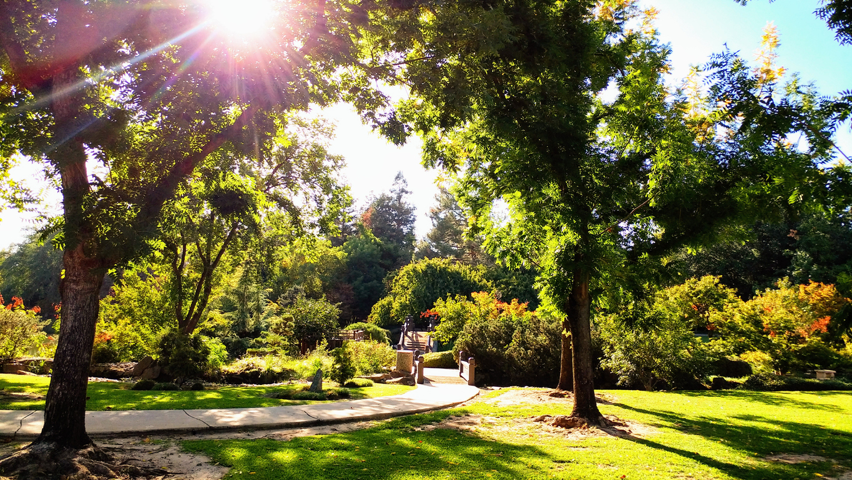 Sunny in Fresno, California