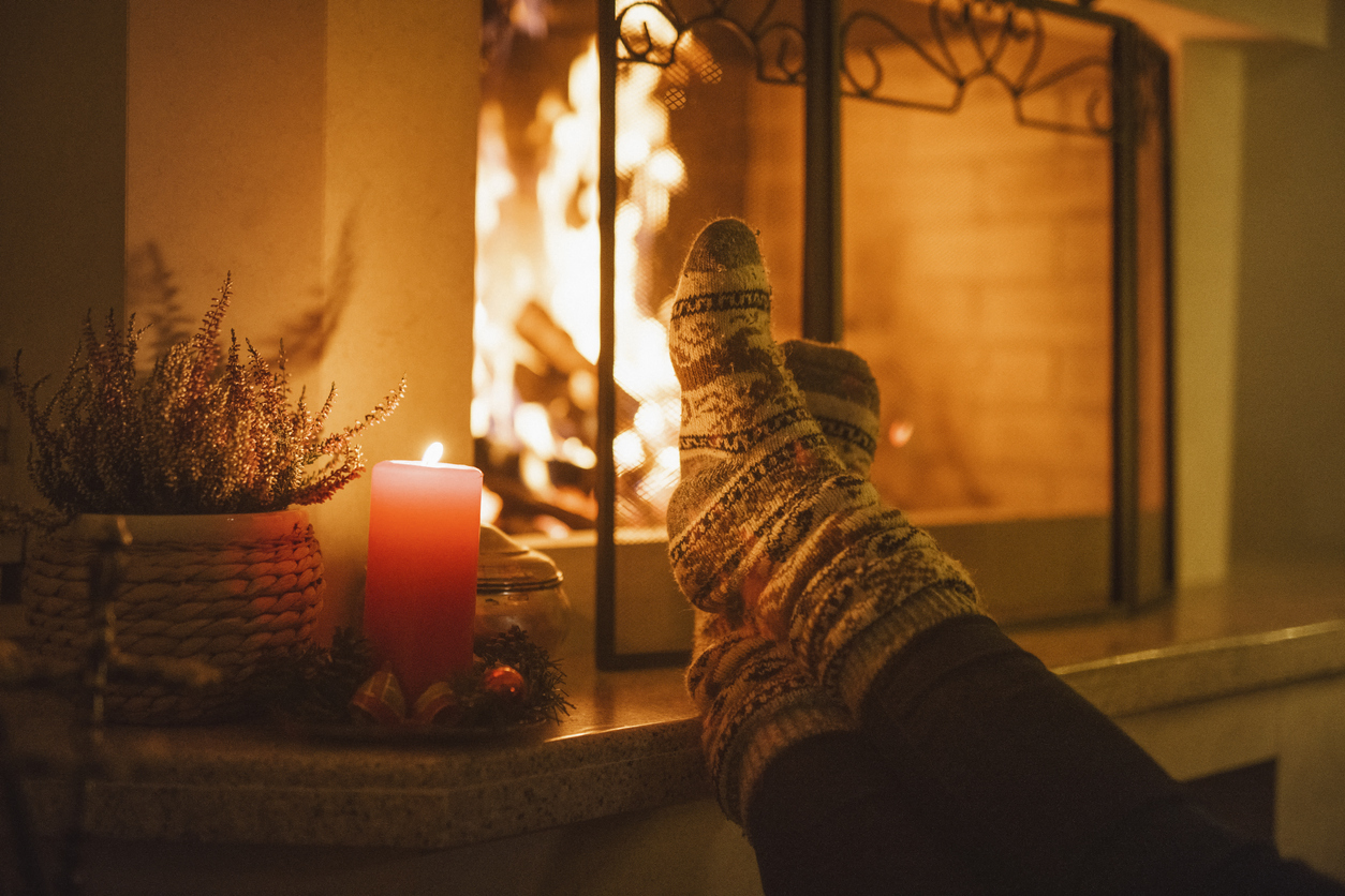 Vernal Tenant Warming Their Toes by the Cozy Fireplace