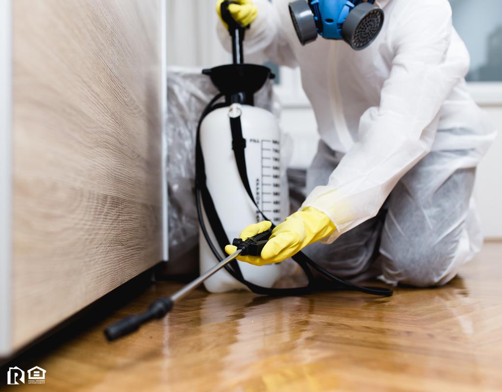 Exterminator Hard at Work in a Jefferson Rental Home