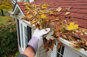 Person Performing Fall Maintenance By Cleaning Gutters