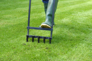 Manually Aerating the Lawn at a Rental Home in Baltimore