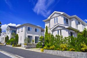 Fresh green emerging residential area
