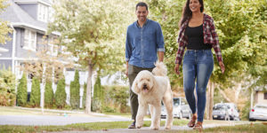 Man and woman walking their pet in the neighborhood