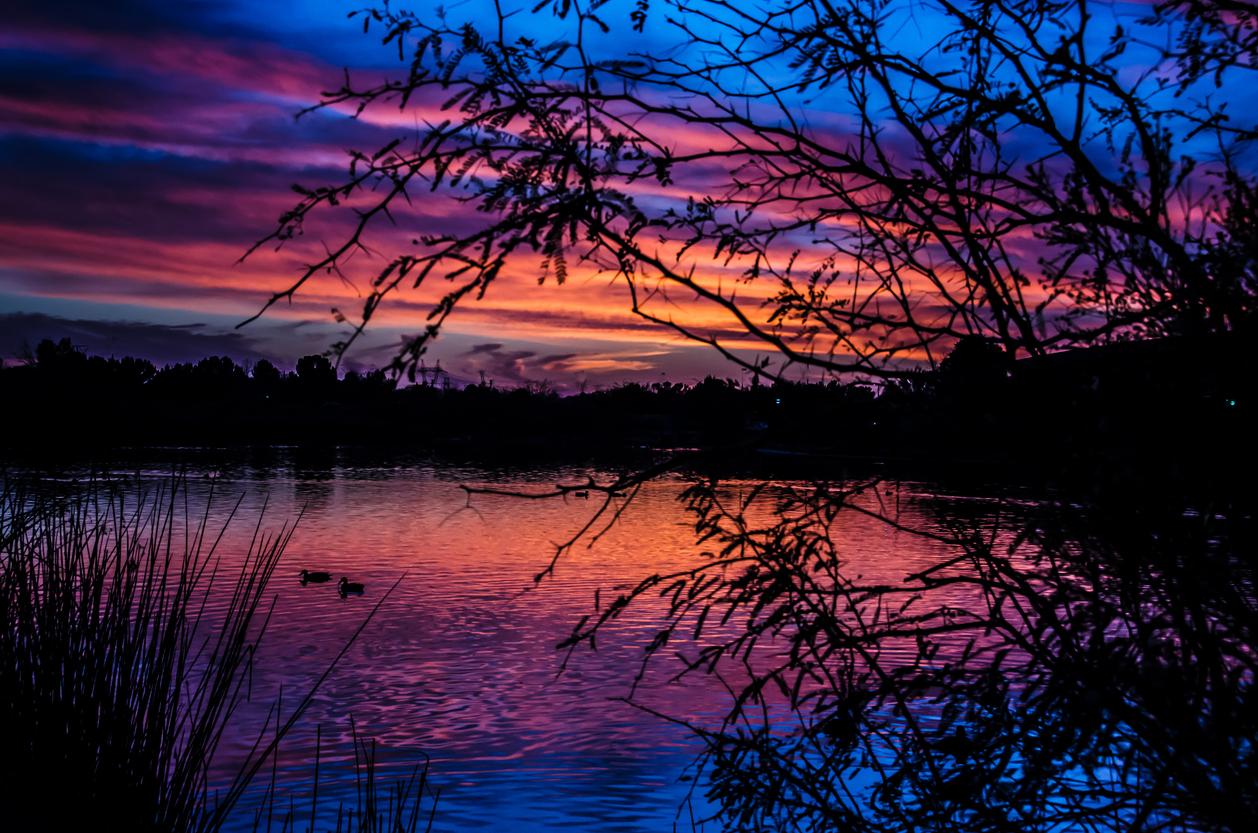 Sunset at Gilbert Riparian Preserve