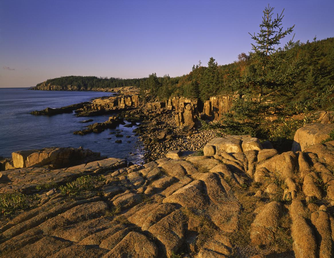 Rocky Cliffs Of Otter Cove Acadia National Park Bar Harbor, Maine