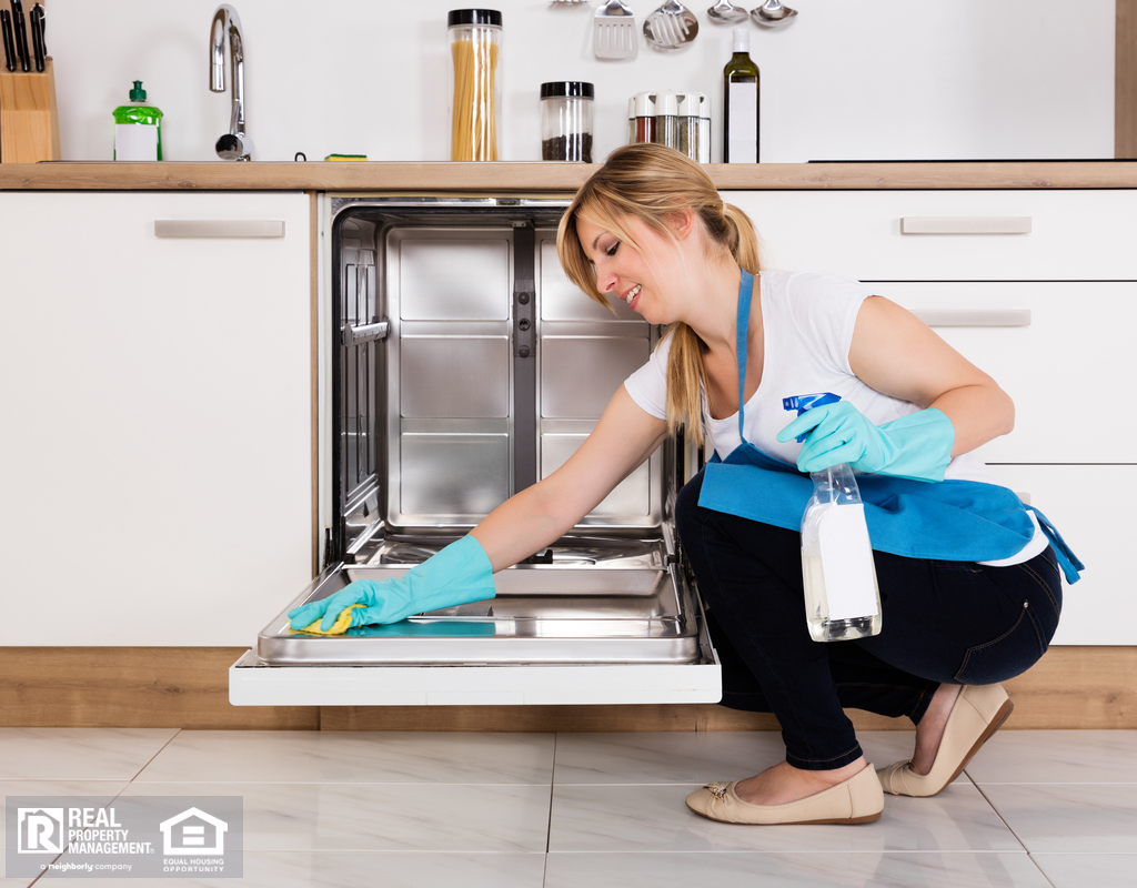 Blonde Woman Cleaning Dishwasher with Rubber Gloves