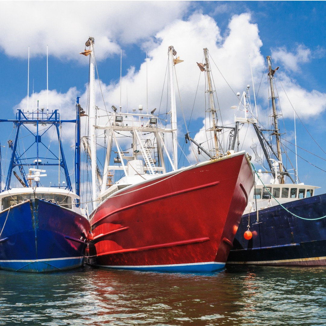 Blue and Red Fishing Boats in the Acushnet River in