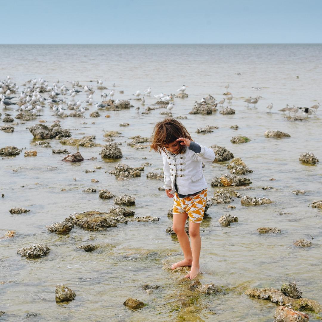 small child exploring coastal Massachusetts