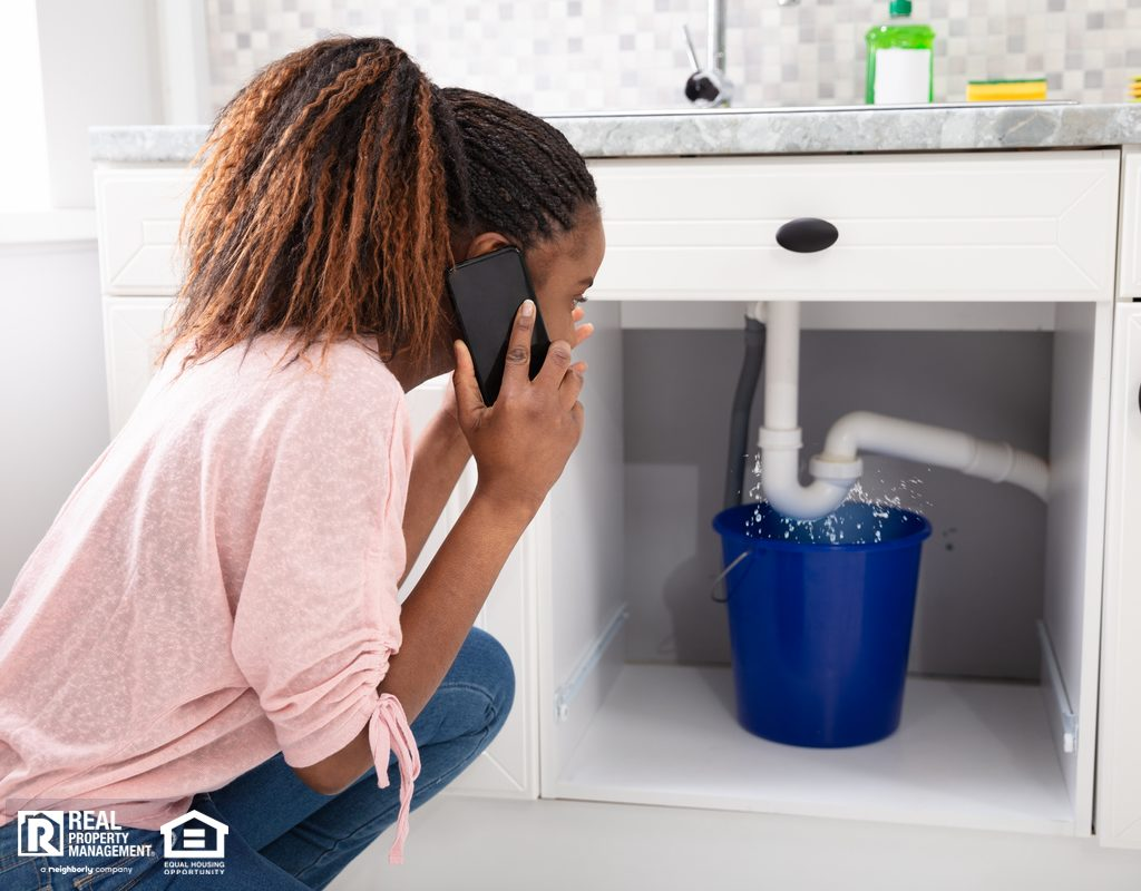 Cumming Woman Calling Landlord About a Leak