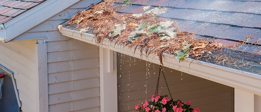 why cleaning your gutters protects your home