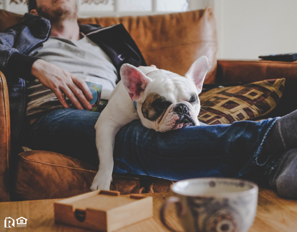 Pawtucket Man with French Bulldog in His Lap