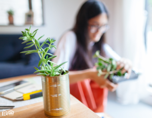 Johnston Woman Repurposing Metal Cans for Planters on her Desk