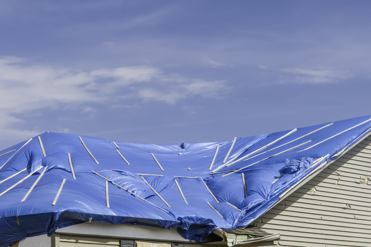 Roof tarped in preparation for a hurricane