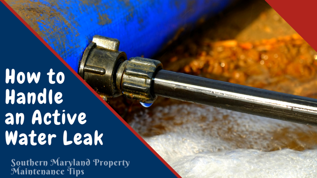 How to Handle an Active Water Leak
