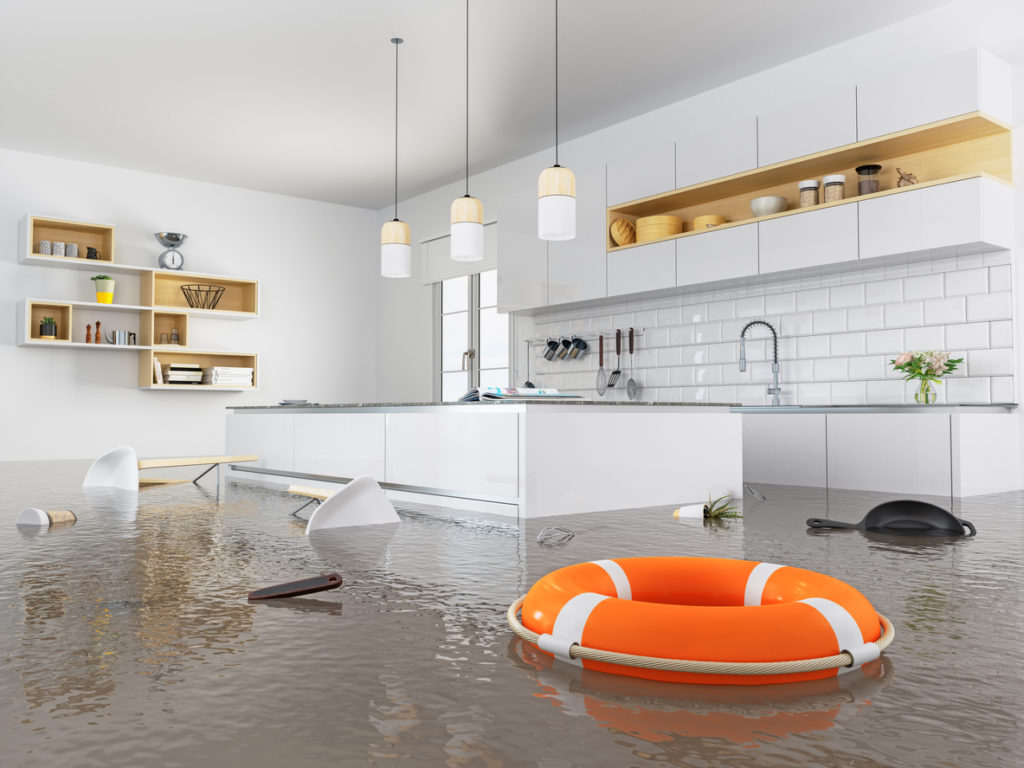 Lifebuoy floating in a flooded kitchen