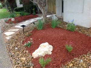 Xeriscape-Front-Yard-to-Help-with-Low-Water-Usage