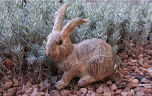 Adorable Wooden Bunny Rabbit Sitting Along the Edges of a Xeriscaped Yard in Rollinsford