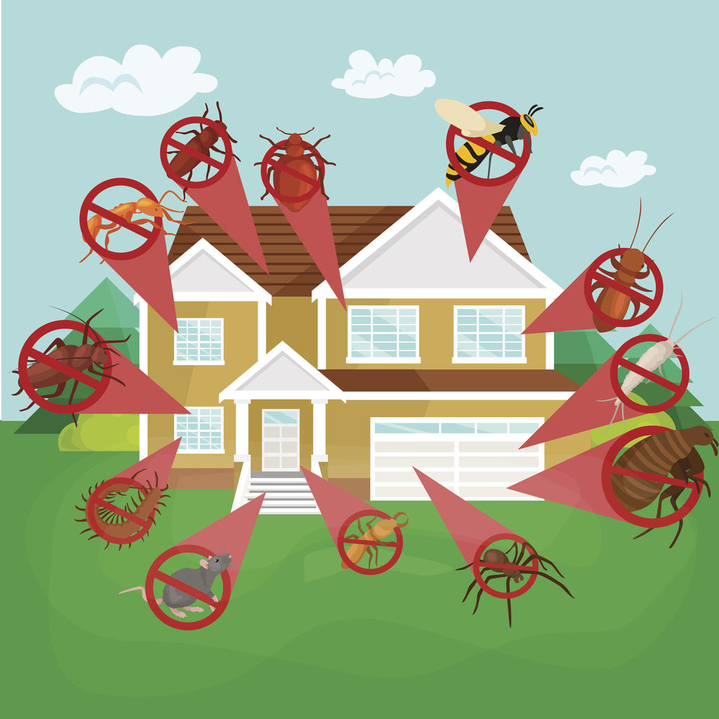 Keeping Your Portsmouth Rental Property Pest Free