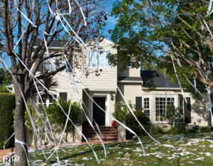 Bangor Rental Property with Toilet Paper in the Trees