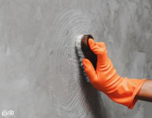 Scrubbing a Wall in a Jamaica Plain Rental Property