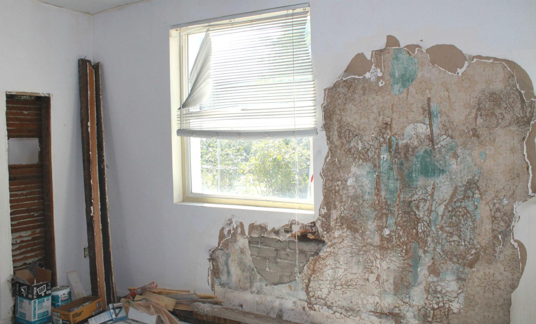 Redmond Rental Property Being Restored After Mold Remediation Services