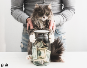 Baxter Tenant with a Piggy Bank and a Cute Cat